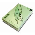ENVIROcopy L Eco Label White Copier A4 Green Leaf