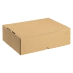 Brown Carton with Lid 305x215x100mm Pk10