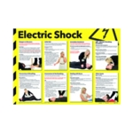Health/Safety Poster Electric Shock