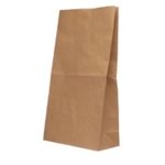 Paper Bag Brown W305xD215xH387mm Pk125