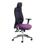 Buckingham Executive Chair C/W arms + multi-adj headrest