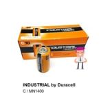 INDUSTRIAL C Batteries