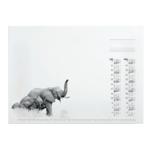 Calendar Refill African Wildlife 570x410