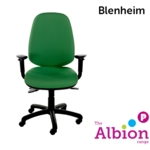 Blenheim Task Chair with Task Adjustable Arms