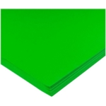 Poster Paper Sheets 510mm X 760mm Leaf Green