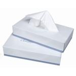 Facial Tissues Box White 100 sheet